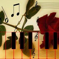 Cours de piano, tous styles, tous niveaux, méthode moderne et rapide