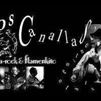 "Groupe ""Los canallas sentiementales"", inspiration flamenco fusion cherche dates ou tourneur."