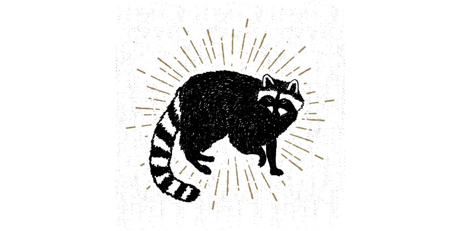 Ghost Racoon